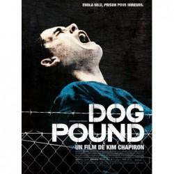 Dog Pound - Affiche 40x60cm