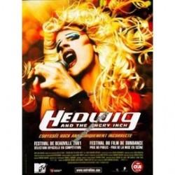 Hedwig - Affiche 40x60cm