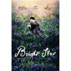 Bright Star - Affiche 40x60cm